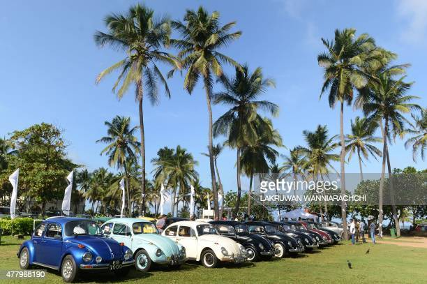 Vintage Volkswagen Beetle cars are parked in Colombo on June 21 during Volkswagen Day celebrations Volkswagen owners hold an annual pageant in Sri...