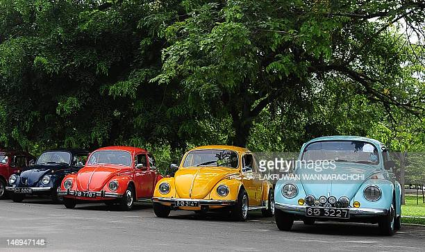 Vintage Volkswagen Beetle cars are parked in Colombo on June 24 during Volkswagen Day celebrations in Sri Lanka Volkswagen owners hold an annual...