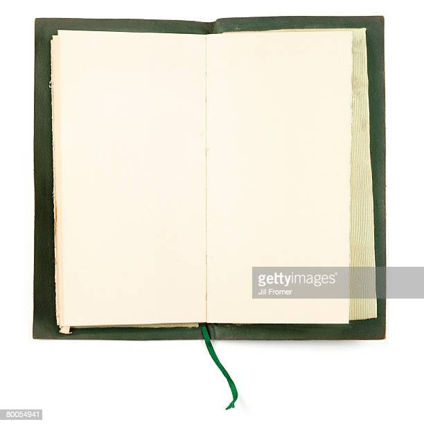 A vintage worn green book with blank pages.