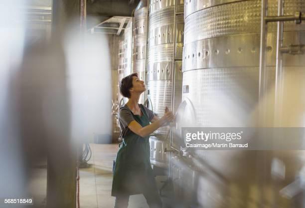 Vintner checking stainless steel vat in winery cellar