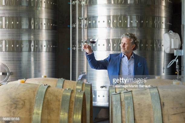 Vintner examining red wine in winery cellar