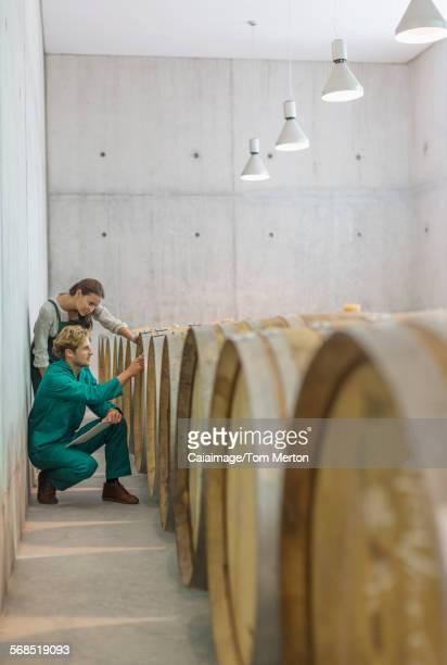 Vintners examining barrels in winery cellar