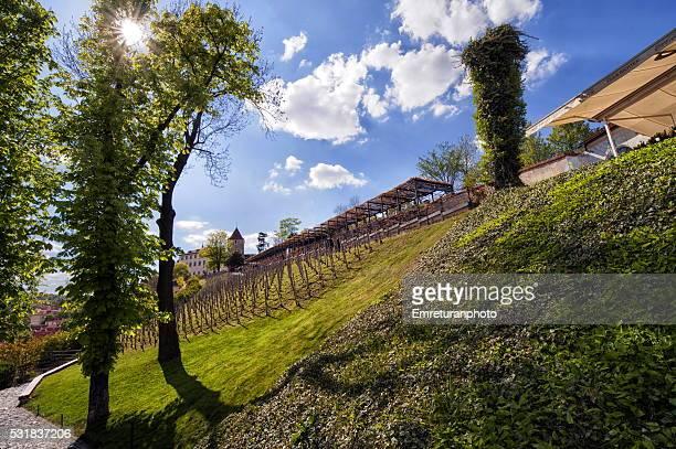 vinyard view near malostranska subway station,prague - emreturanphoto stock pictures, royalty-free photos & images