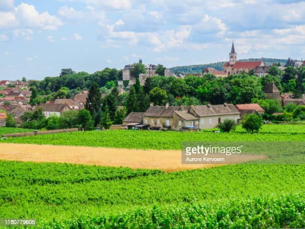 フランス、ブルゴーニュのポマールとムルソー近くのルリーのヴィンヤード - シャロンシュルソーヌ ストックフォトと画像