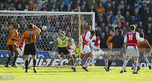 Vio Ganea of Wolves scores during the FA Barclaycard Premiership match between Wolverhampton Wanderers and Arsenal at Molineux on February 7 2004 in...
