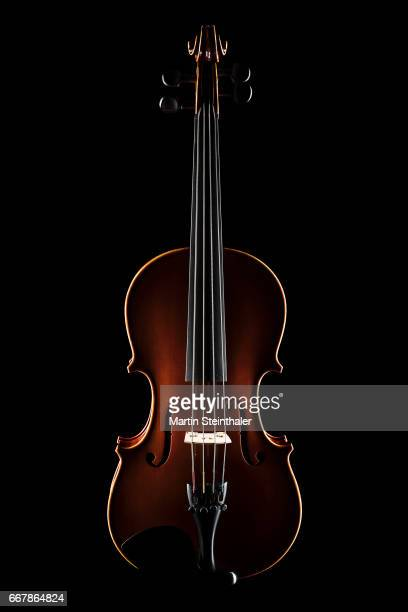 viola instrument on black background - string instrument stock photos and pictures