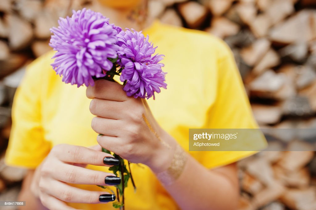 Violet Aster Flowers At Hands Of Girl In Yellow Shirt Stock Photo