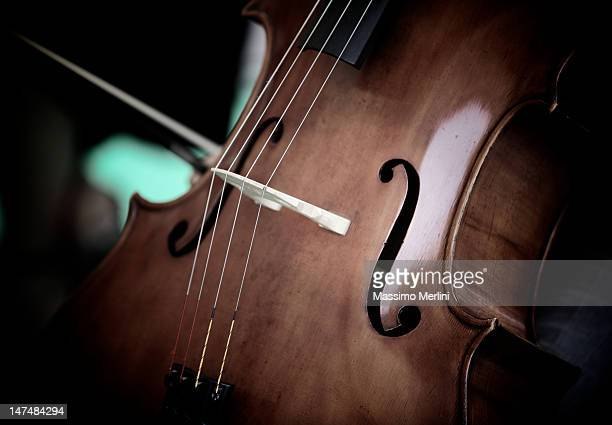 viola - stringed instrument stock pictures, royalty-free photos & images