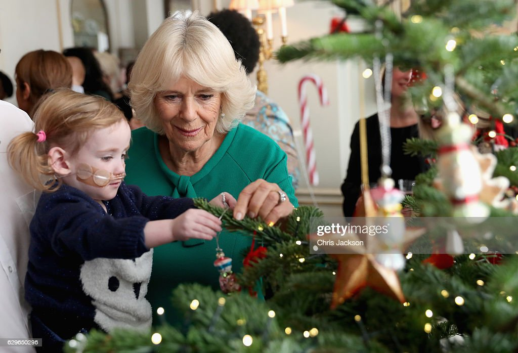 Violet Webster, who has a hole in the heart and is aged 2, helps Camilla, Duchess of Cornwall decorate the Clarence House Christmas Tree at Clarence House on December 14, 2016 in London, England. The Duchess of Cornwall, Patron, Helen & Douglas House invited children from the charity and children supported by Roald Dahl's Marvellous Children's Charity to decorate the Christmas tree and join Her Royal Highness for lunch at Clarence House.