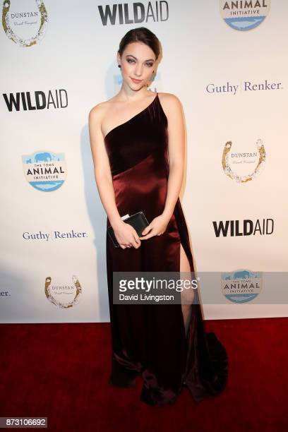 Violett Beane arrives at the Evening with WildAid at the Beverly Wilshire Four Seasons Hotel on November 11 2017 in Beverly Hills California