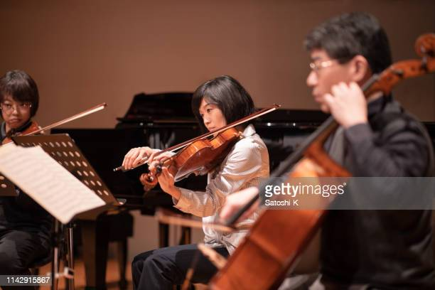 violin and cello concert - string instrument stock photos and pictures