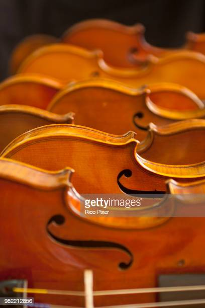 violin mountains - violin family stock photos and pictures