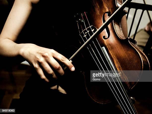 バイオリンのミュージシャン