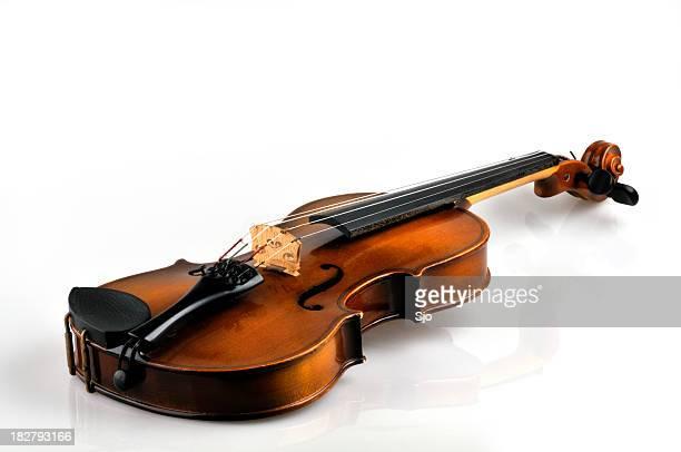 Violine auf Weiß