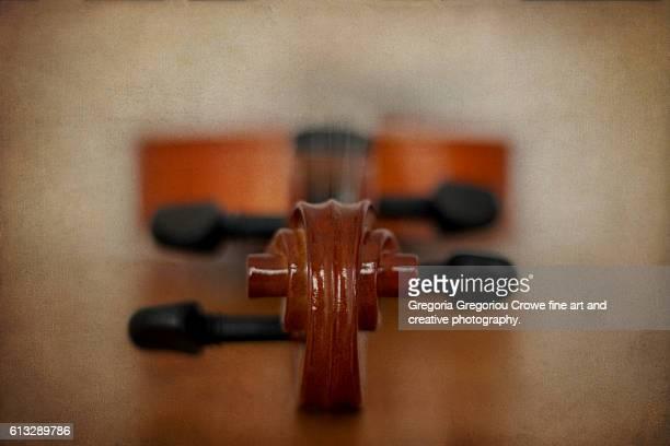 violin - gregoria gregoriou crowe fine art and creative photography. - fotografias e filmes do acervo
