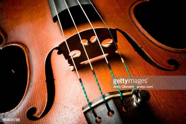 violin - andy clement stock photos and pictures