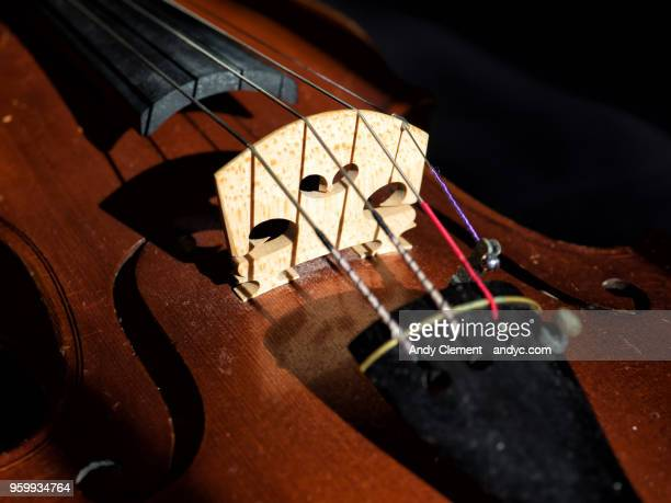 violin - andy clement stock pictures, royalty-free photos & images