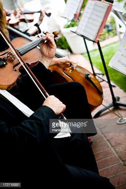 violin playing at a wedding - musical quartet stock photos and pictures