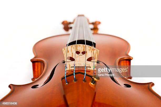Violin seen from below
