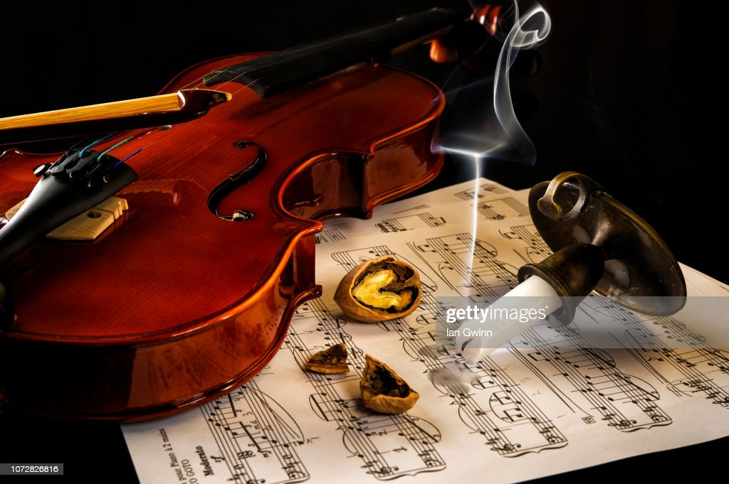 Violin Vanitas : Stock Photo
