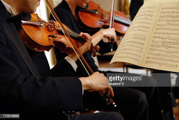 violinist - string instrument stock photos and pictures