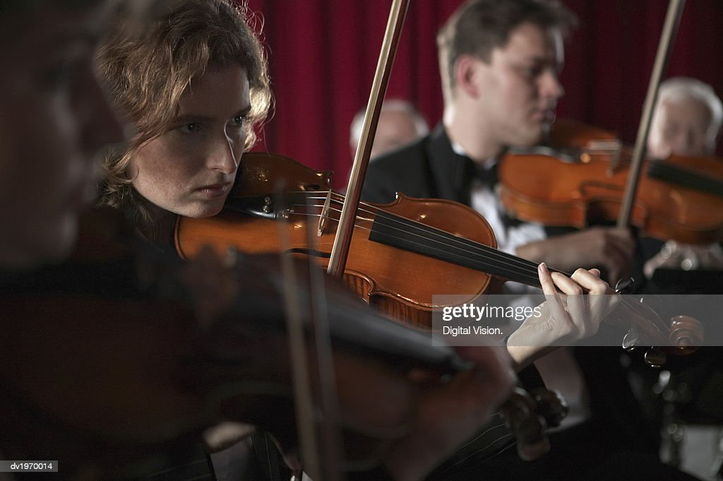 Violinists Playing in an Orchestra : Stock Photo