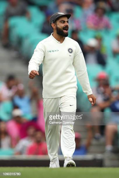 Virat Kohli of India celebrates the final wicket during day four of the Fourth Test match in the series between Australia and India at Sydney Cricket...