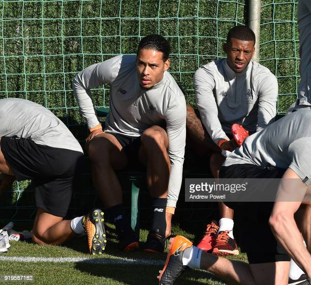 Virgil van Dijk and Georginio Wijnaldum of Liverpool during a training session at Marbella Football Center on February 17 2018 in Marbella Spain