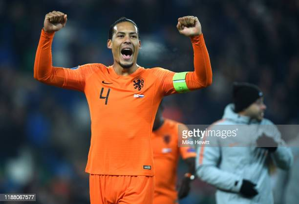 Virgil van Dijk of Netherlands celebrates following his team's draw in the UEFA Euro 2020 Group C Qualifier match between Northern Ireland and...