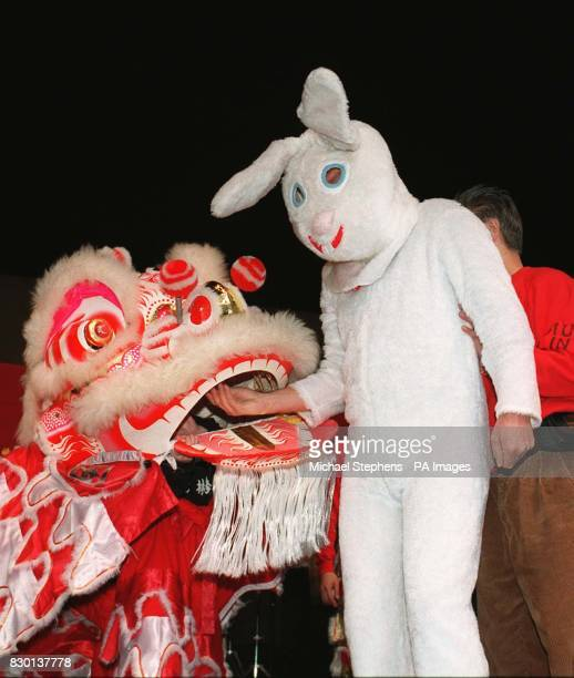 Virgin boss Richard Branson dressed as a rabbit to celebrate the start of the Chinese New Year the Year of the Rabbit in London's Chinatown