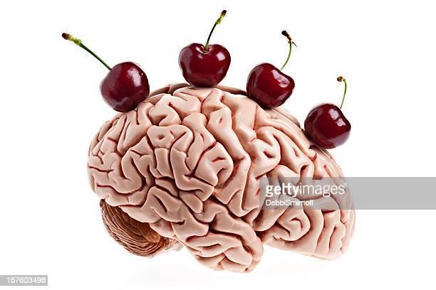 Virgin Gehirn