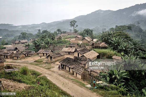 virgin forest in north kivu - village stock pictures, royalty-free photos & images