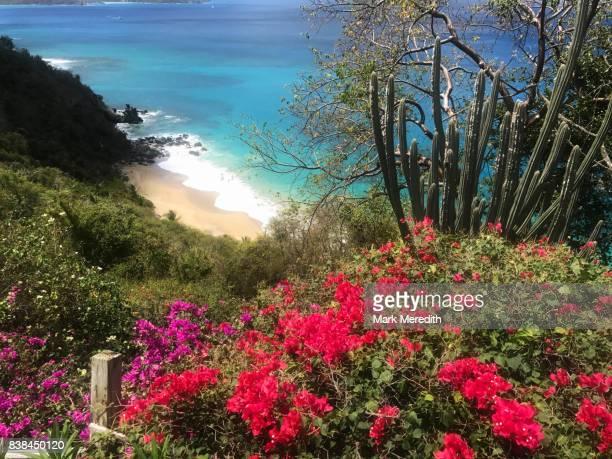 virgin gorda colours, british virgin islands - islas de virgin gorda fotografías e imágenes de stock
