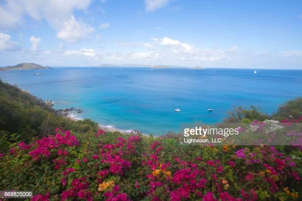 virgin gorda in british virgin islands - islas de virgin gorda fotografías e imágenes de stock