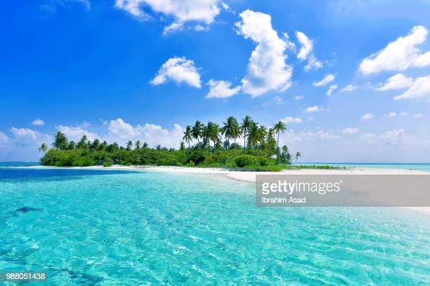 virgin island in maldives - insel stock-fotos und bilder