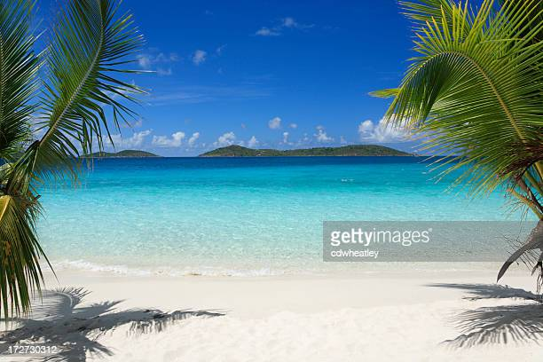 virgin islands beach - idyllic stock pictures, royalty-free photos & images