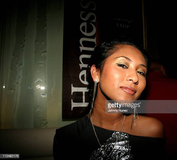 Virgin Recording artist Che'Nelle during Hennessy Taste of Luxury XO Event Hosted by Hip Hop in New York City New York United States
