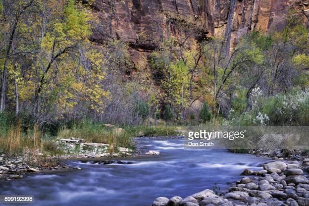 virgin river and zion canyon - don smith stock-fotos und bilder