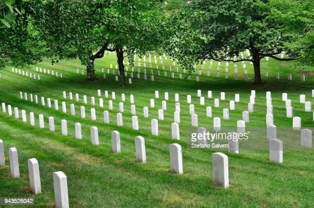 USA, Virginia, Arlington Memorial Cemetery