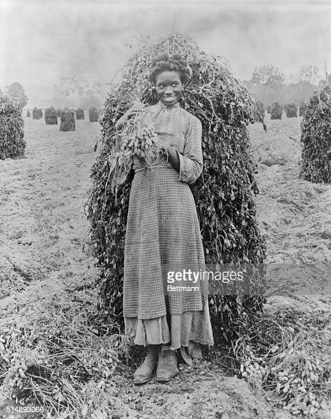 *Colored girl smiling after completion of peanut crop Photograph circa 1870 Richmond Virginia