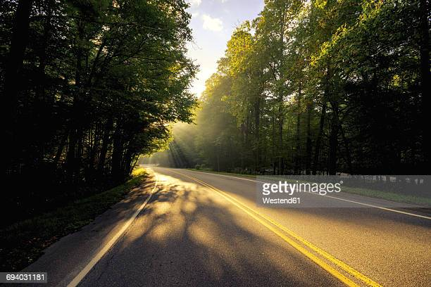 usa, virginia, empty blue ridge parkway at morning sunlight - blue ridge parkway stock pictures, royalty-free photos & images