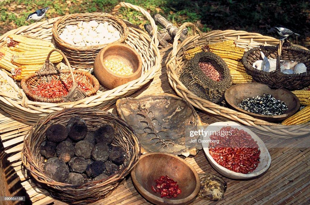Virginia, Jamestown Settlement, Seasonal Foods On Display ...  Virginia, James...