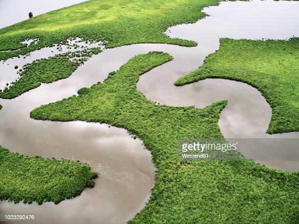 usa, virginia, marshes of the chickahominy river - sumpf stock-fotos und bilder