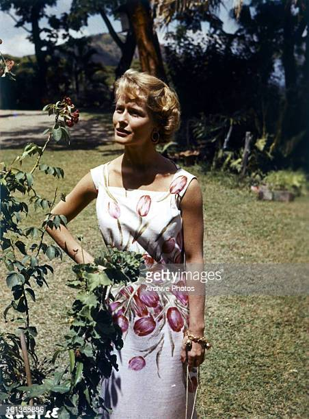 Virginia McKenna admires a flower in a scene from the film 'Storm Over Jamaica' 1958