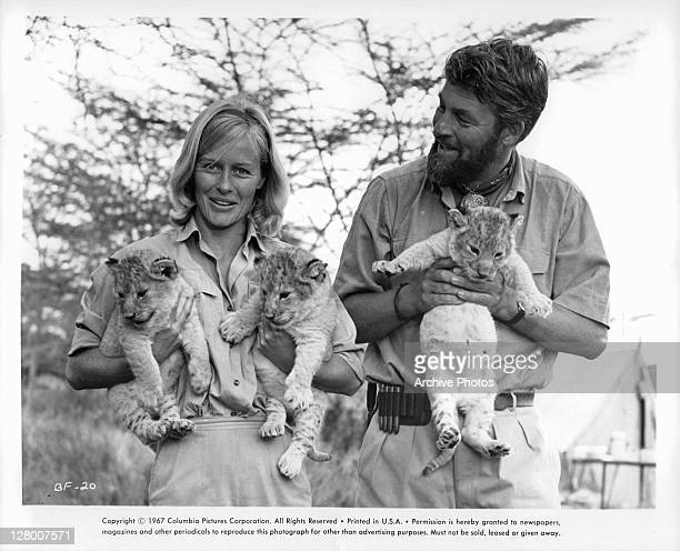 Virginia McKenna and Bill Travers holding lion cubs in a scene from the film 'Born Free' 1966
