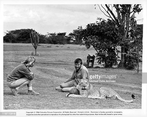 Virginia McKenna and Bill Travers in publicity shot for the film 'Born Free' 1966