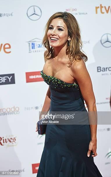 Virginia Troconis attends the Jose Maria Forque Awards 2016 at Teatro de la Maestranza on January 14, 2017 in Seville, Spain.