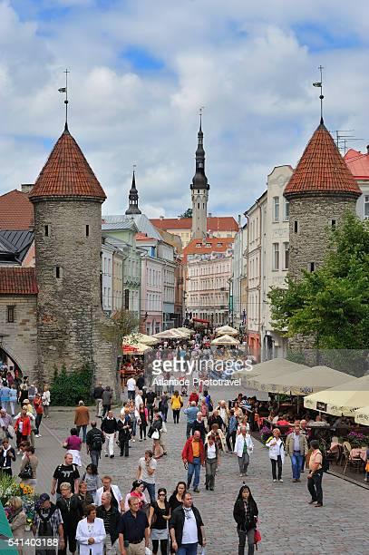 viru street in tallinn, estonia - estonia stock pictures, royalty-free photos & images