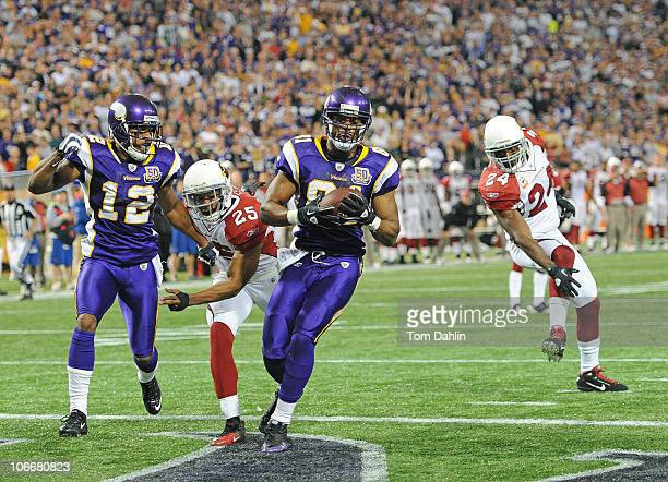 Visanthe Shiancoe of the Minnesota Vikings makes a touchdown catch during an NFL game against the Arizona Cardinals at Mall of America Field at the...