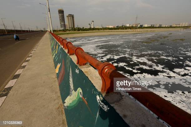 A visible improvement in the waters of the river Yamuna during the nationwide lockdown to curb the spread of coronavirus at Kalindi Kunj on April 17...